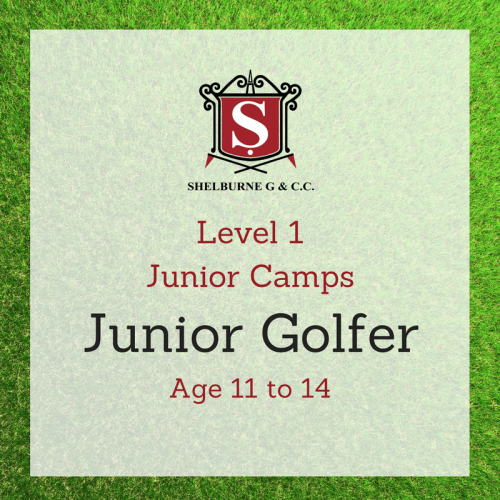 Level 1 Junior Camps Age 11 to 14