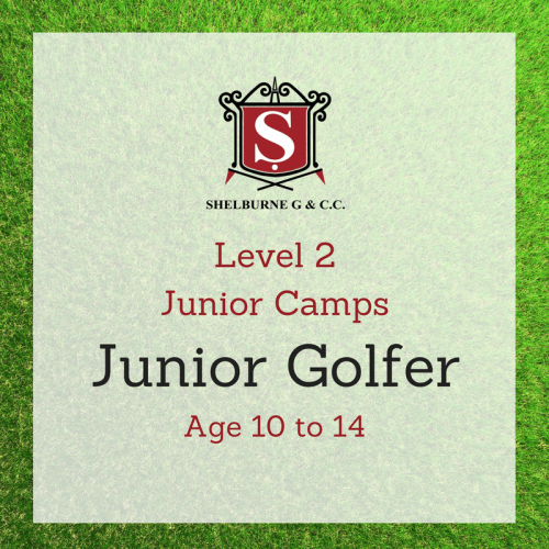 Level 2 Junior Camps Age 10 to 14