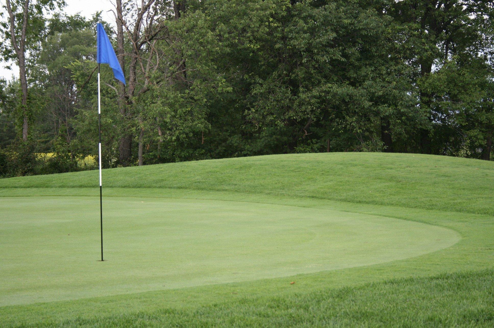 Shelburne Ontario Golf Leagues